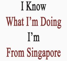 I Know What I'm Doing I'm From Singapore  by supernova23