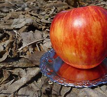 An apple and dead leaves by Evgeniya