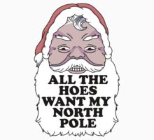 All The Hoes Want My North Pole by Look Human