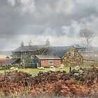 Thunderbush Farm, Commondale ~ North Yorkshire by patrixpix