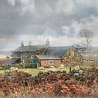 Thunderbush Farm, Commondale ~ North Yorkshire by patrixpix