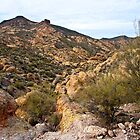 Dressed in Yellow Apache Trail by Lee Craig
