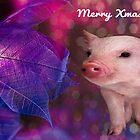 A Very Piggy Xmas! by Vicki Childs