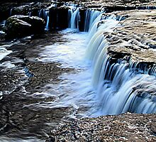 Aysgarth Falls by Irene  Burdell