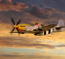 P-51 Ferocious Frankie by James Biggadike