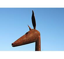 Rusty Kangaroo Head Photographic Print