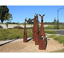 Rusty Roos! Photographic Print
