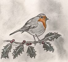 Robin by Sam Burchell