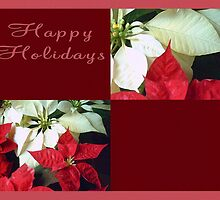 Mixed Color Poinsettias 2 Happy Holidays Q10F1 by Christopher Johnson