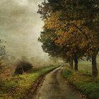 Shades of Autumn by Sarah Jarrett