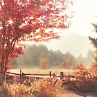 Autumn's Delight by Tracy Friesen