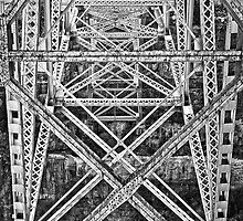 Trestle Transcendent in Black and White by Lee Craig