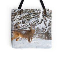 Young Buck in snow - White-tailed Buck, Ottawa Tote Bag