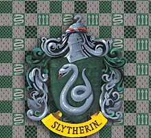 Slytherin Cover by Hairac
