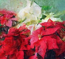 Mixed color Poinsettias 3 Sketchy by Christopher Johnson