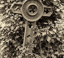 Iron grave marker - toned by picsl8