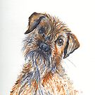 'Border Terrier' by fi-ceramics
