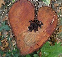 Hidden Heart by Daisy Bolton