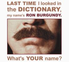 My name is Ron Burgandy by prjncess