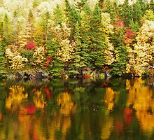 Fall Reflections by nerdywithnature