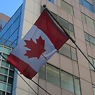 Canadian Flag by Marie Van Schie