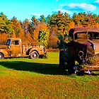 Antique rusted trucks Bradley Maine by Celeste Cota