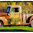 Antique rusted truck in Bradley Maine by Celeste Cota