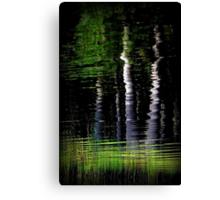 Yin and Yang: The Tao of Trees Canvas Print