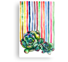 Rainbow Succulents Metal Print