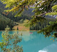 Emerald Lake British Columbia by Lynn Bolt