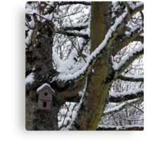 Winter Residence for the birds Canvas Print