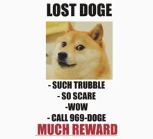 Lost Doge by timnock