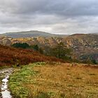 Eskdale by VoluntaryRanger