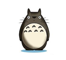 Totoro Artwork by Chango