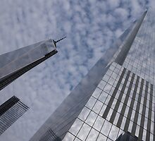 Fascinated with Manhattan - Sky, Glass and Skyscrapers by Georgia Mizuleva