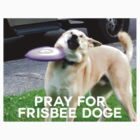 Pray for Frisbee Doge by FRESH PRINCE COX