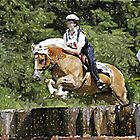 Haflinger Eventing Horse by Oldetimemercan