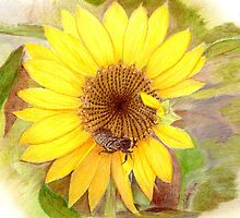 Bumble Bee on Sunflower by Linda Ginn Art