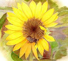 Bumble Bee on Sunflower by Linda Ginn Art
