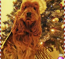KIM - Christmas card (IV) by chelo
