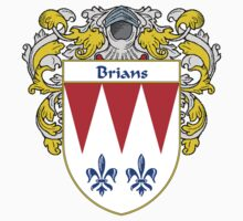 Brians Coat of Arms/Family Crest by William Martin