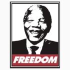 Nelson Mandela Tribute by M&J Fashion Graphic