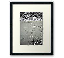Tracks on a Frozen Creek. Framed Print