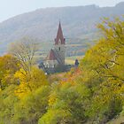 danube, river cruise by Barry Culling
