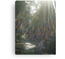 """""""Refraction of Light"""" Canvas Print"""