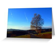 Tree, road and indian summer evening   landscape photography Greeting Card