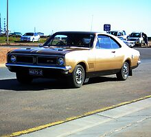 HOLDEN MONARO by Steve9