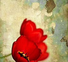 Lovely Red Flowers With Moody Grunge Canvas Texture and Stains by Denis Marsili - DDTK