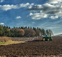 Following the Plough by Judi Lion