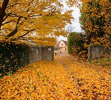 Chelsworth autumn by Christopher Cullen